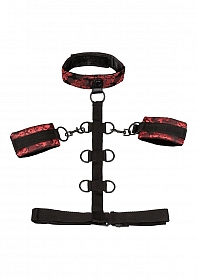 Scandal® Collar Body Restraint