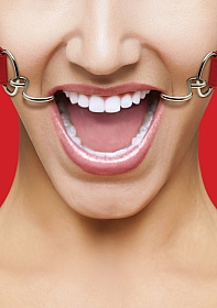 Hook Gag - Red
